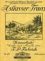 A süasser Tram – 1