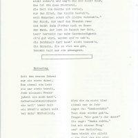 Das Erlenblatt Nr. 3-1979 – 13