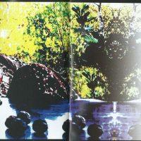 Walcher von der Vogelweide Booklet – 2