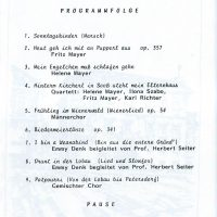 Burg Perchtoldsdorf – 5
