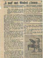 Das kleine Volksblatt 19.06.1929