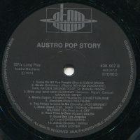 The Austro Pop Story 8