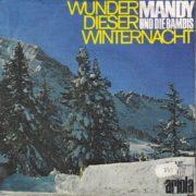 Wunder dieser Winternacht – 1