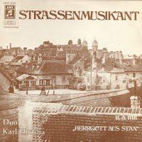 Strassenmusikant 1
