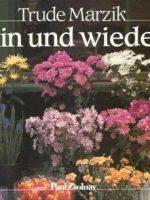 1985 Hin und wieder – Erstaufl.