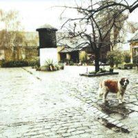 Dove House Blues – 2