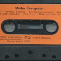 Mister Evergreen – 4
