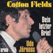 Cottonfields – 1